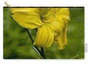 Daylily Picture 469 Carry-all Pouch