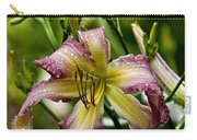 Daylily Picture 494 Carry-all Pouch