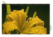 Daylily Picture 539 Carry-all Pouch