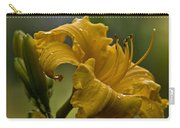 Daylily Picture 558 Carry-all Pouch