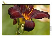 Daylily Pictures 576 Carry-all Pouch