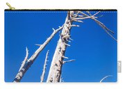 Dead White Trees Carry-all Pouch