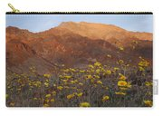 Death Valley Spring 2 Carry-all Pouch