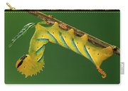 Deaths Head Hawk Moth  Carry-all Pouch