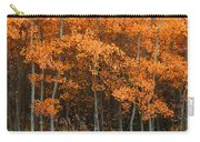 Deciduous Aspen Forest In Fall Carry-all Pouch