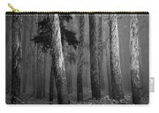Deep Forest Carry-all Pouch by Leland D Howard