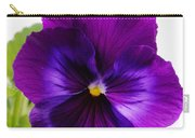 Deep Purple Pansy Carry-all Pouch