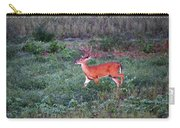 Deer-img-0113-001 Carry-all Pouch