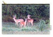 0150-004- Up To 24x17.125 Carry-all Pouch