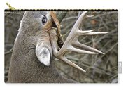 Deer Pictures 444 Carry-all Pouch