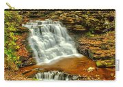 Delaware Falls - Ricketts Glen Carry-all Pouch