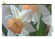 Delicate Daffodils  Carry-all Pouch