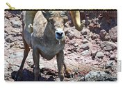 Desert Bighorn Sheep Carry-all Pouch