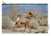 Desert Bighorn Sheep Ram At Borrego Carry-all Pouch