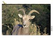 Desert Bighorn Sheep Zion National Park Carry-all Pouch