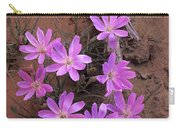 Desert Chicory Rafinesquia Neomexicana Carry-all Pouch