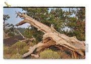 Desert Creation Carry-all Pouch