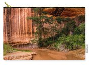 Desert Oasis - Coyote Gulch - Utah Carry-all Pouch