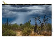 Desert Rains  Carry-all Pouch