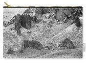 Desert Snowstorm Black And White Carry-all Pouch