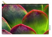 Desert Succulent In Bright Sun And Shade Carry-all Pouch