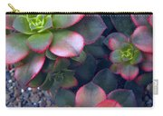 Desert Succulents Carry-all Pouch