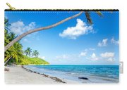 Deserted Beach And Palm Trees Carry-all Pouch