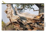 Design By The Desert Carry-all Pouch