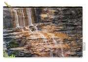 Desoto Falls Carry-all Pouch