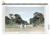 Detroit - Belle Isle Park - Central Avenue - 1905 Carry-all Pouch