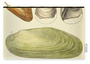 Devonian Fossils, Illustration Carry-all Pouch