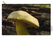 Dew Drop On Poriaceae Carry-all Pouch