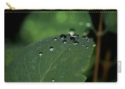 Dewy Morn Carry-all Pouch