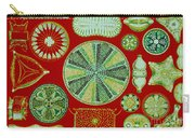 Diatoms-ernst Haeckel Carry-all Pouch
