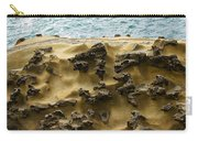 Differential Erosion Carry-all Pouch