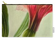 Dim Colours Carry-all Pouch