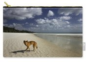 Dindo, Western Beach, Fraser Island Carry-all Pouch