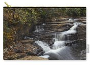 Dismal Falls Carry-all Pouch