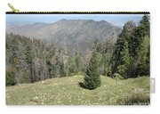 Distant View - Mount Lemmon Carry-all Pouch