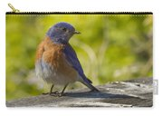 Distracted Carry-all Pouch by Jean Noren