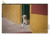 Dog In Colorful Mexican City Carry-all Pouch