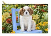 Dog On Blue Chair Carry-all Pouch by Greg Cuddiford