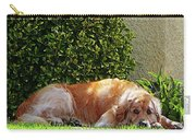 Dog Relaxing Carry-all Pouch