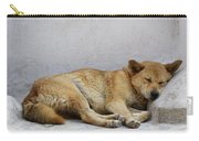 Dog Sleeping Carry-all Pouch