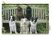Dogs Sitting On Bench Carry-all Pouch