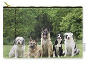 Dogs, Various Breeds In A Line Carry-all Pouch