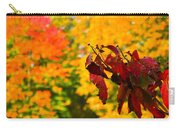Dogwood And Fall Colors Carry-all Pouch