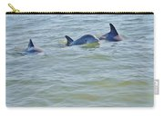 Dolphins 2 Carry-all Pouch