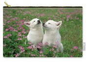 Domestic Dog Canis Familiaris Puppies Carry-all Pouch by Yuzo Nakagawa
