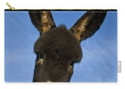 Donkey Foal Carry-all Pouch